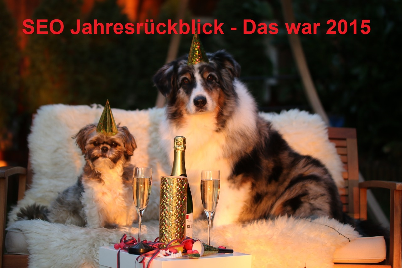 SEO Jahresrückblick 2015